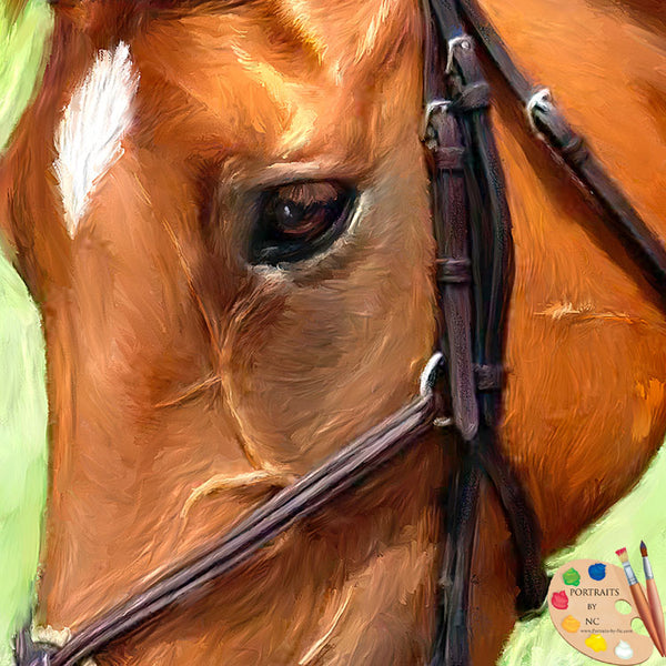 Thoroughbred Horse Portrait 603