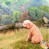 Labradoodle in a Landscape