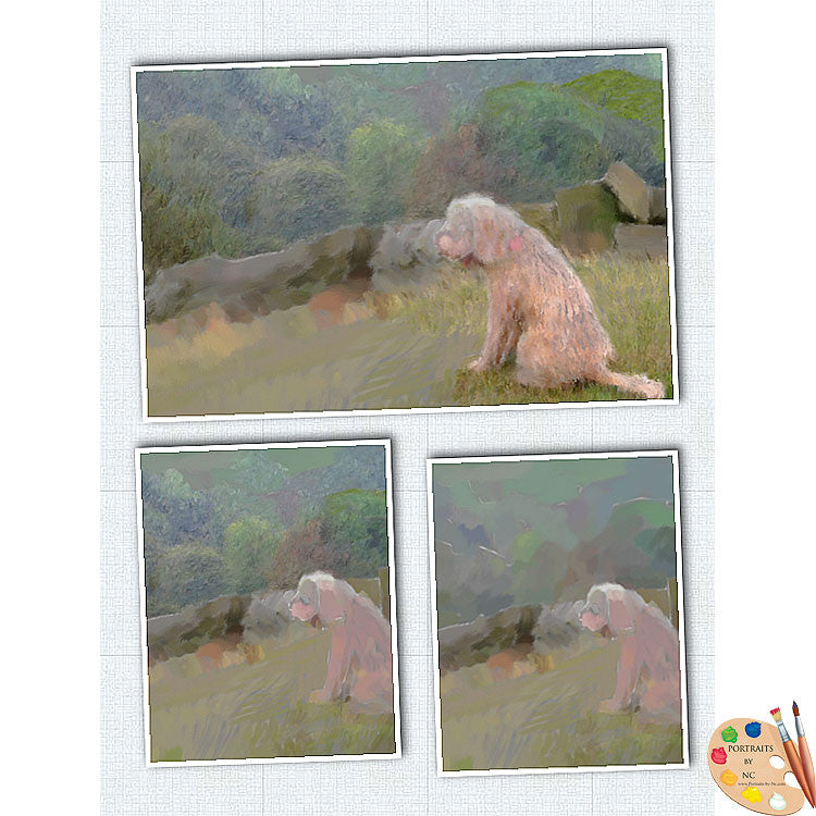 Labradoodle in Field Work in Progress 1