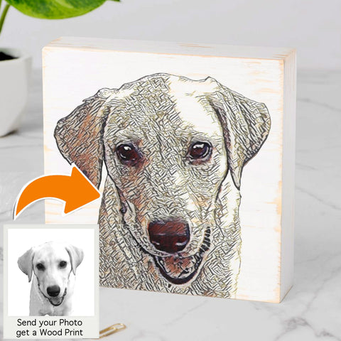 Custom Pet Portraits on Wood or on Pillows