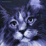 Maine Coon Cat Portrait 680