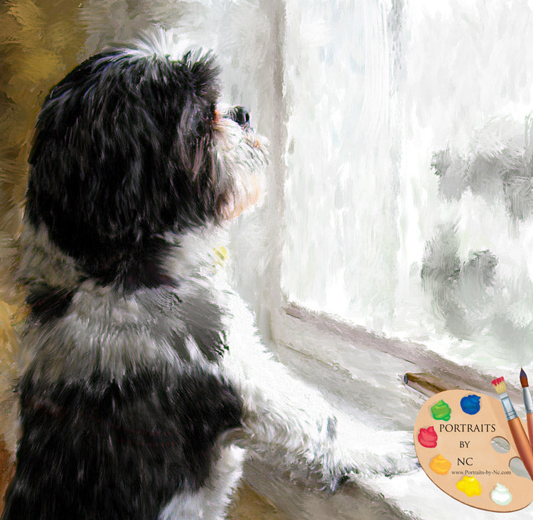 Shih Tzu Portrait - Dog by a Window 514