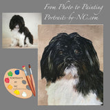 Small Breed Portraits - Shih Tzu Dog Portrait 576
