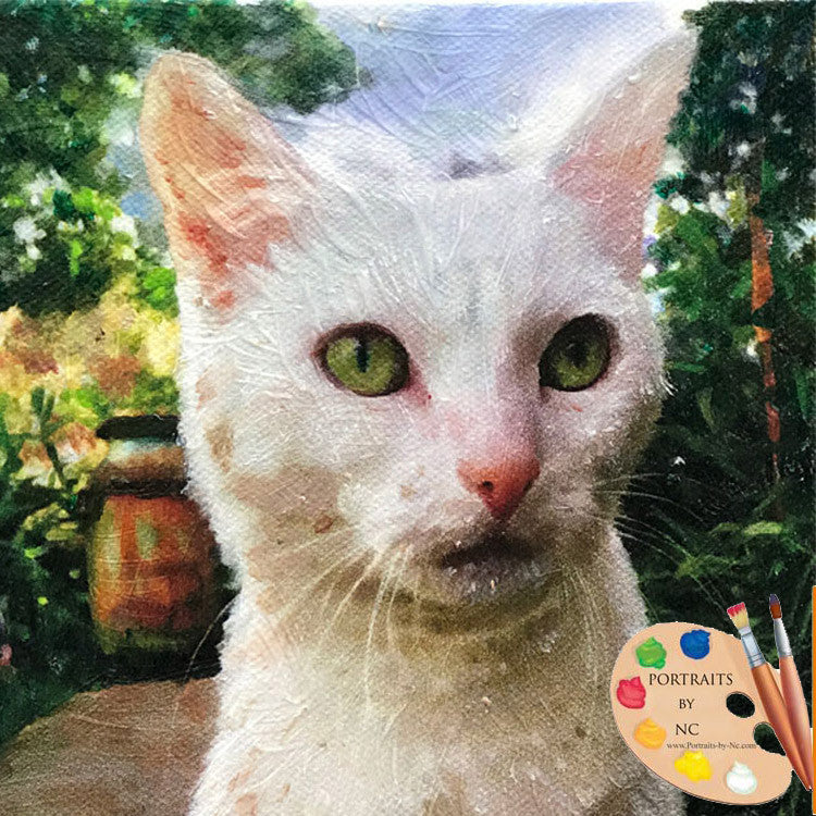 White Cat Portrait 557