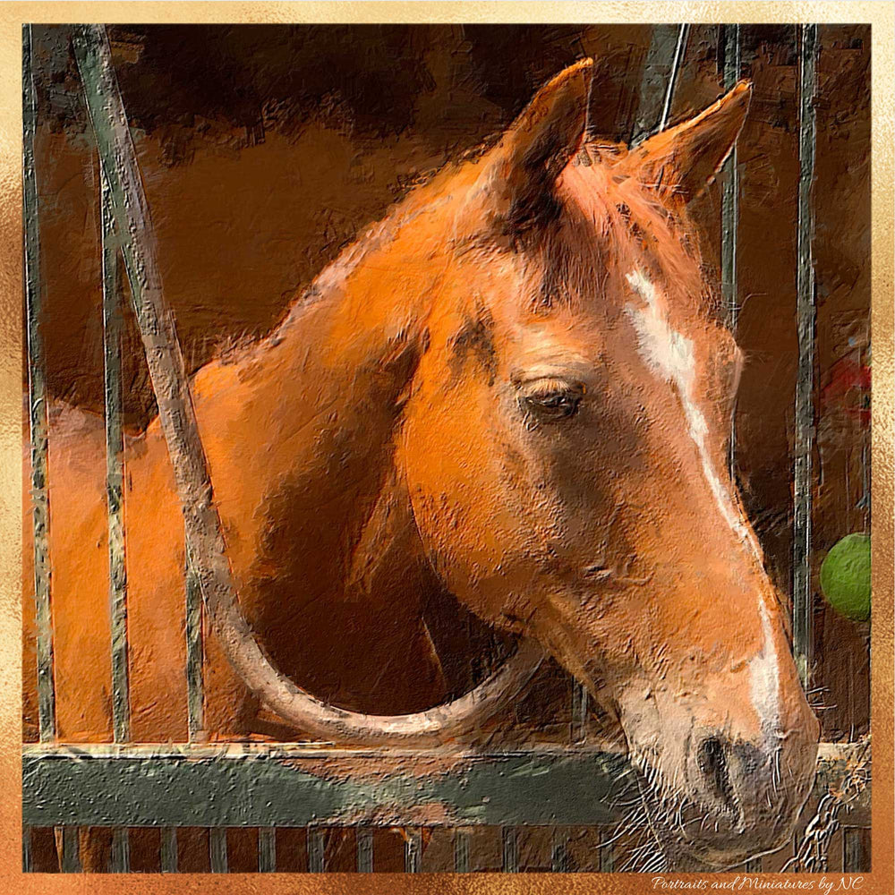 Horse Oil Portraits Equine Art
