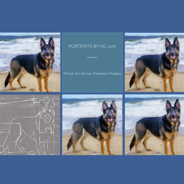 German Shepherd my ocean