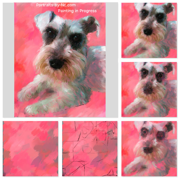 schnauzer dog portrait painting in progress