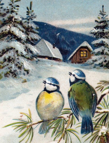 vintage winter postcard with birds