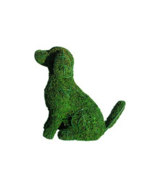 dog topiary frame