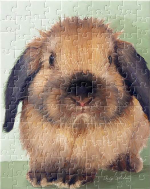Holland Lop Puzzle