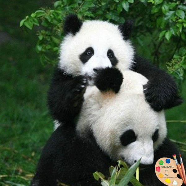 baby-panda-with-mother