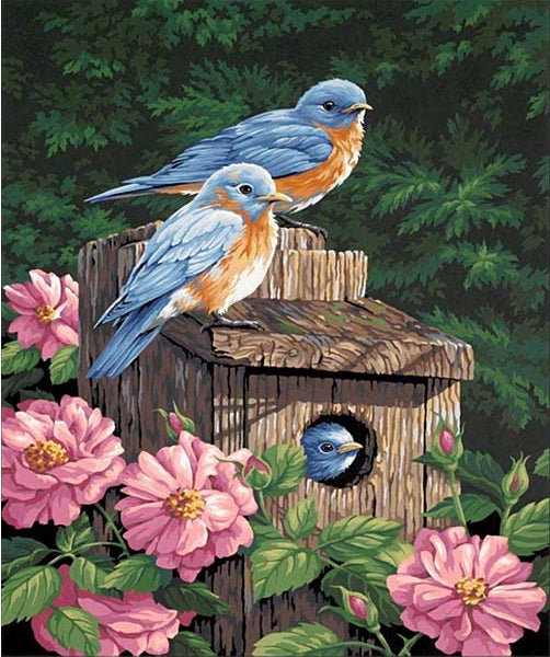 Blue & Orange Birdhouse Canvas DIY Rhinestone Set
