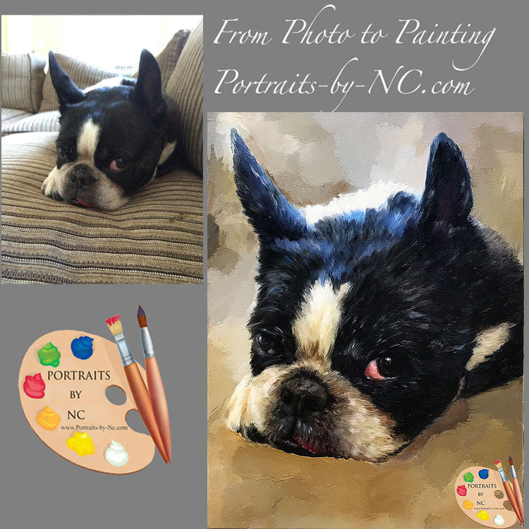 boston-terrier-painted-from-photo