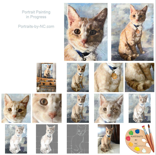 Cat Portrait  Step by Step
