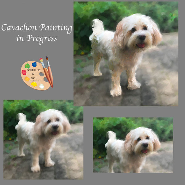 Cavachon Painting in Progress 1