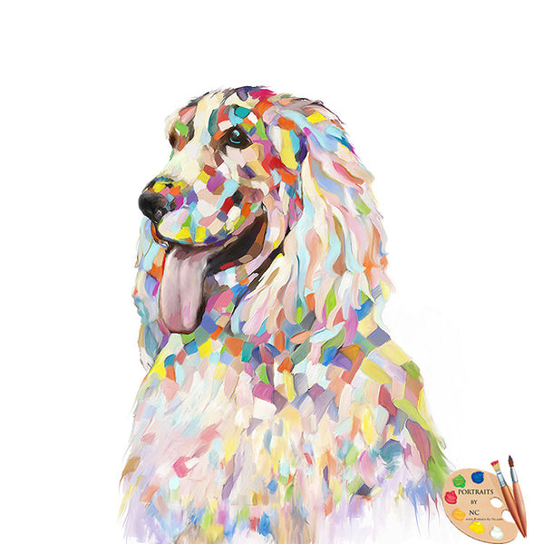 colorful Cockerspaniel