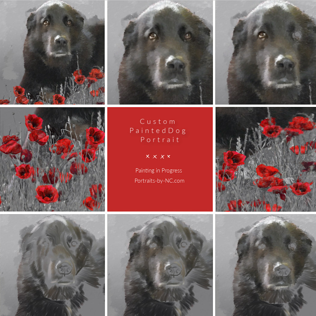 dog portrait with poppies