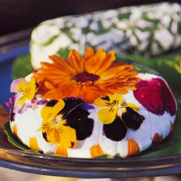 Edible Flowers can be used as Garnish