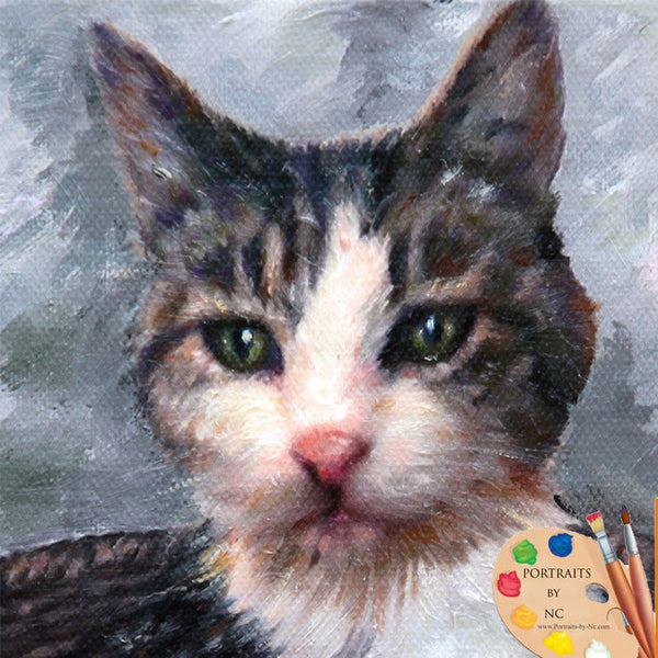 grey-cat-oil-portrait