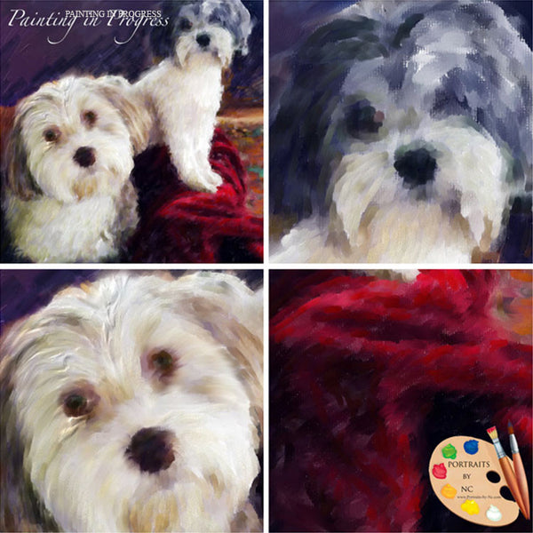 Havanese Painting Stages