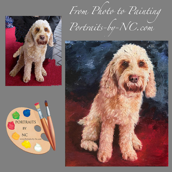 labradoodle from photo