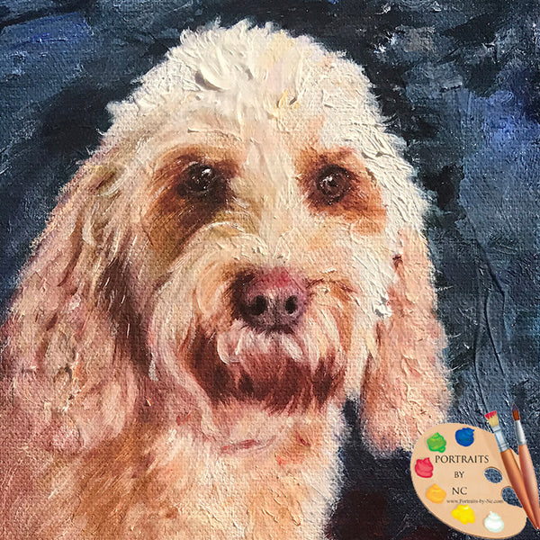 Labradoodle Head Portrait