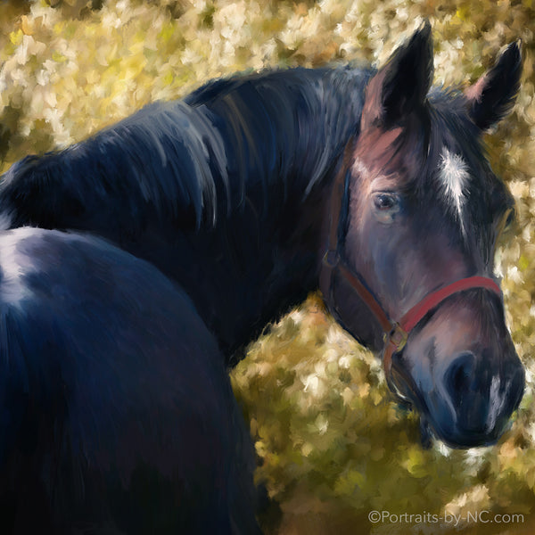 Tennessee walker horse painting progress
