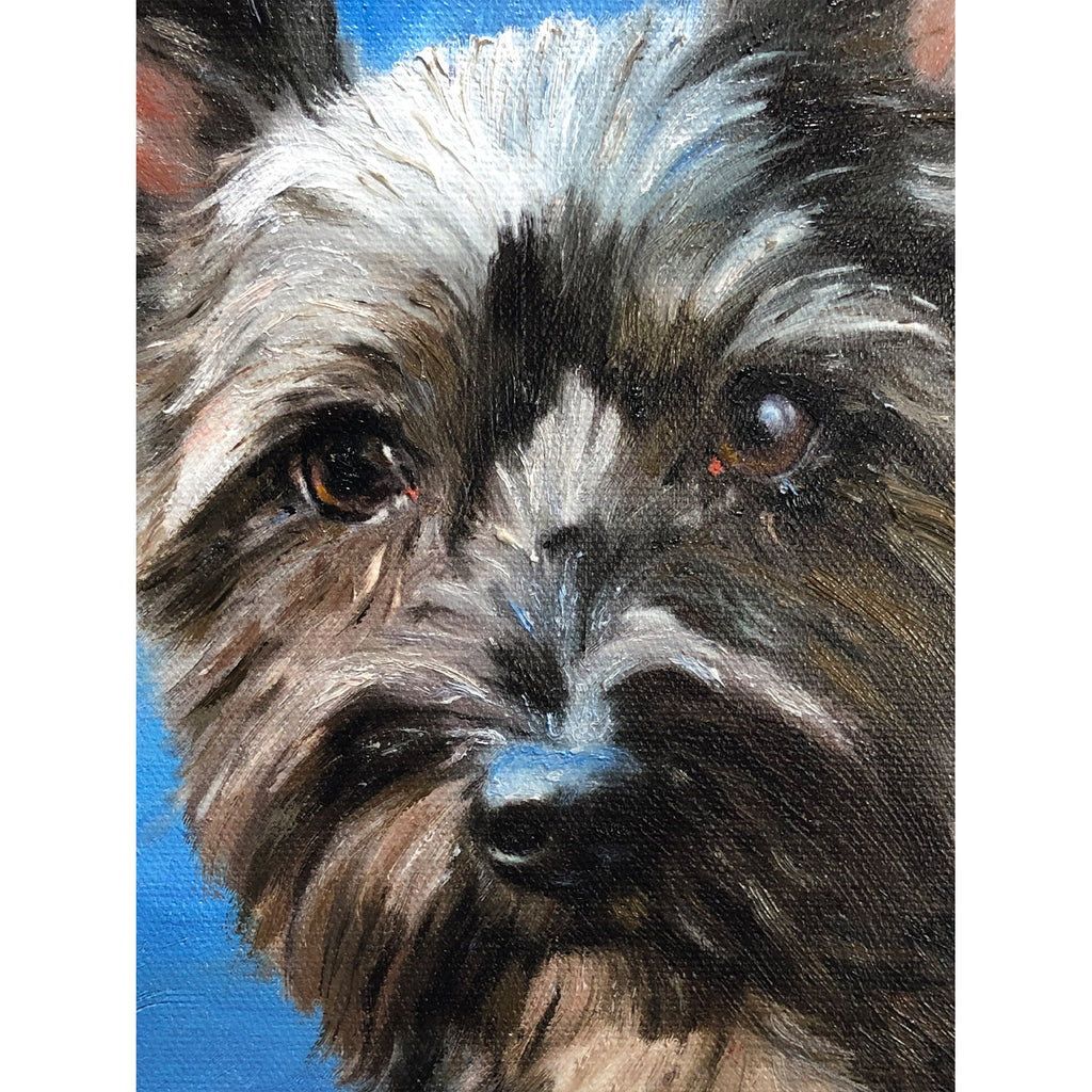 terrier Face detail