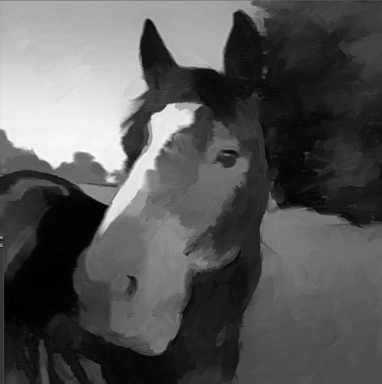 rough block in for horse portrait
