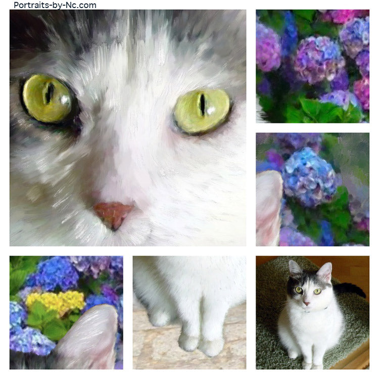 products/655-cat-collage.jpg