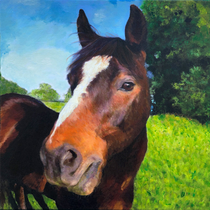 Quarter Horse Custom Oil Portrait