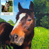 Quarter Horse Oil Portrait from Photo