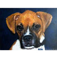 Boxer Puppy Oil Portrait 690 - Portraits by NC