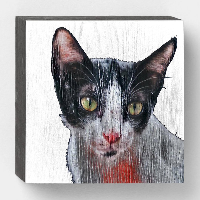 products/Cat-Painting-front-black-side.jpg