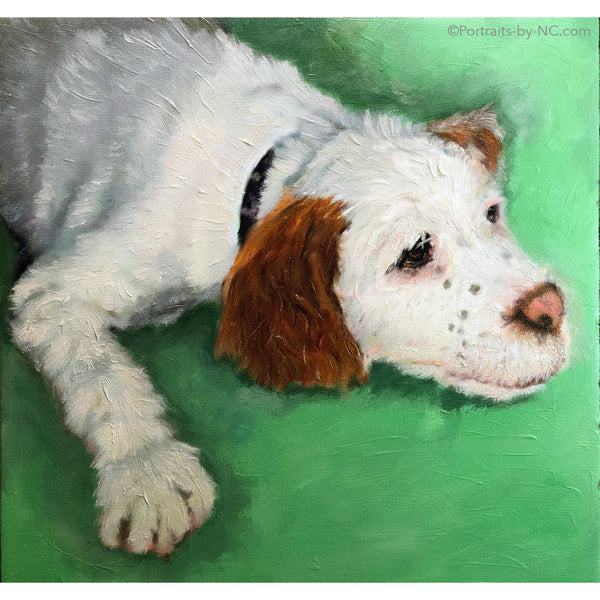 Cocker Spaniel Puppy oil painting