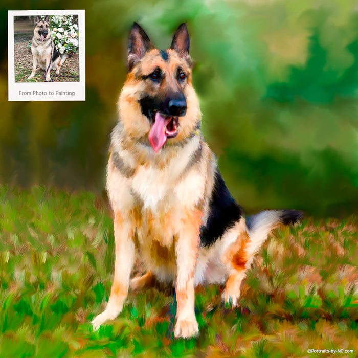Portrait of German Shepherd Dog 641