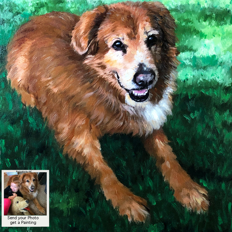 Golden Retriever Dog Portrait in Oil