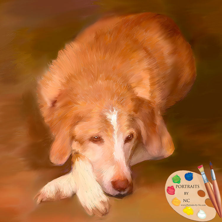 products/Labrador-Painting-633.jpg
