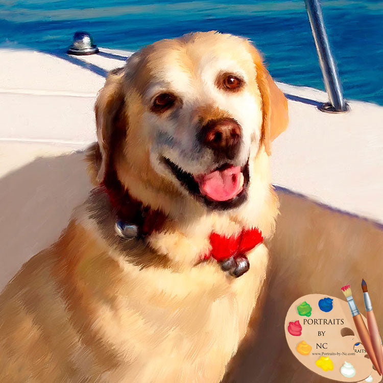 Labrador Dog Portrait 631