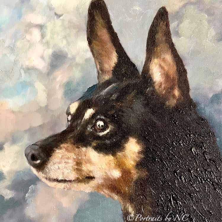 products/Miniature-Pinscher-Close-up.jpg