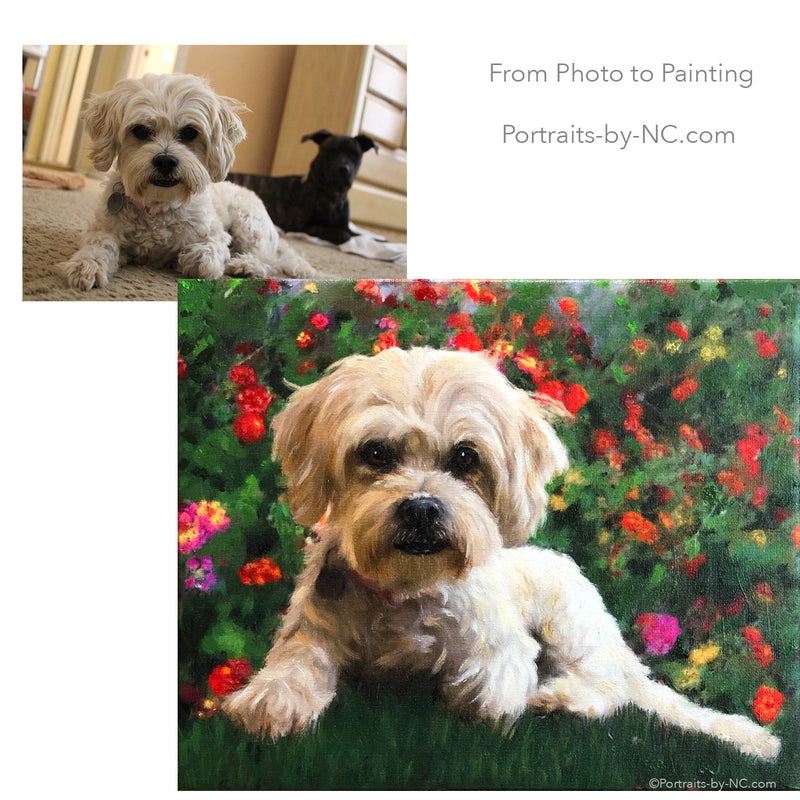 Lhasa Apso/poodle mix painted from photo