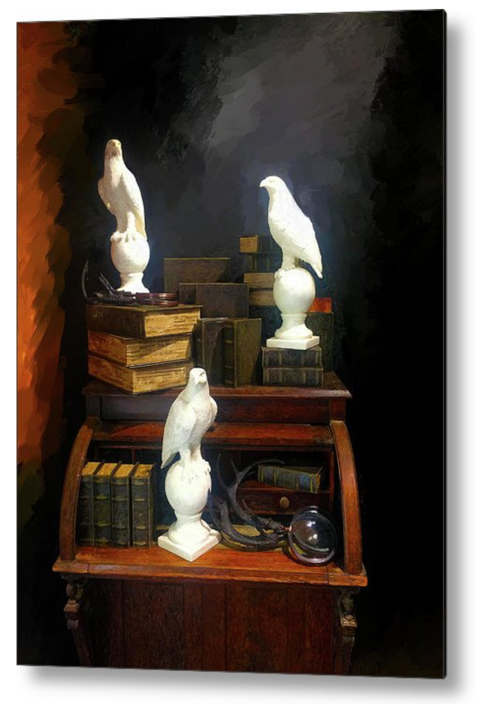 Wizards Library - Metal Print