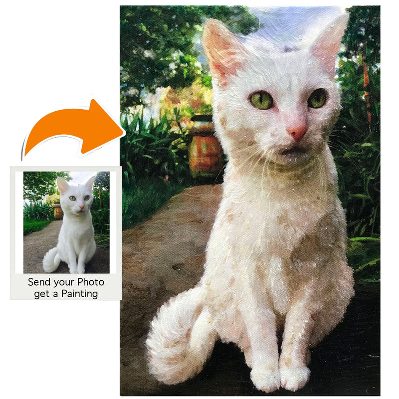 products/White-cat-557.jpg