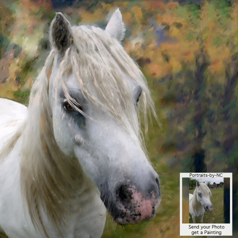 White Horse Portrait - Custom Painted Horse Portrait from Photo