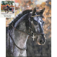 Appaloosa Portrait painted from Photo