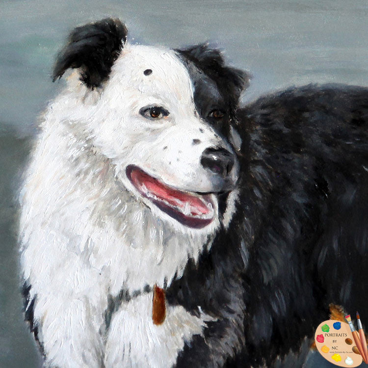 products/australian-border-collie-painting-165.jpg