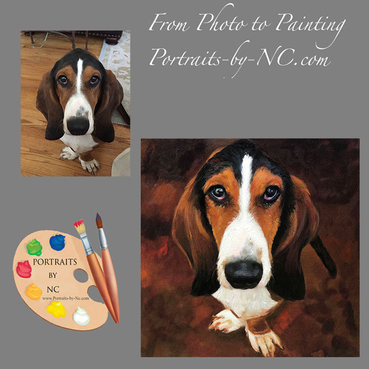 products/basset-hound-portrait-from-photo-570.jpg