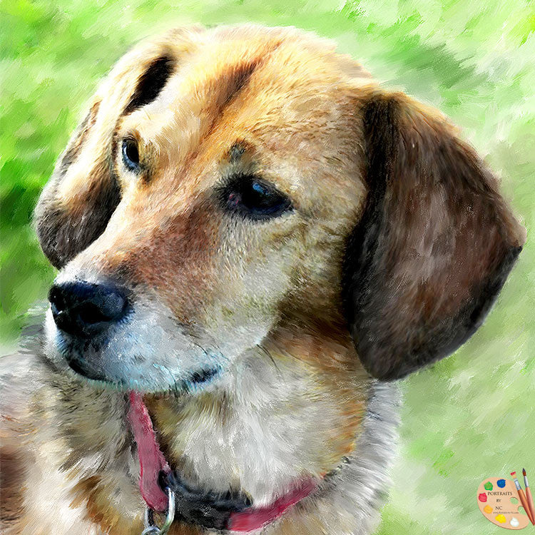 products/beagle-dog-portrait-368.jpg
