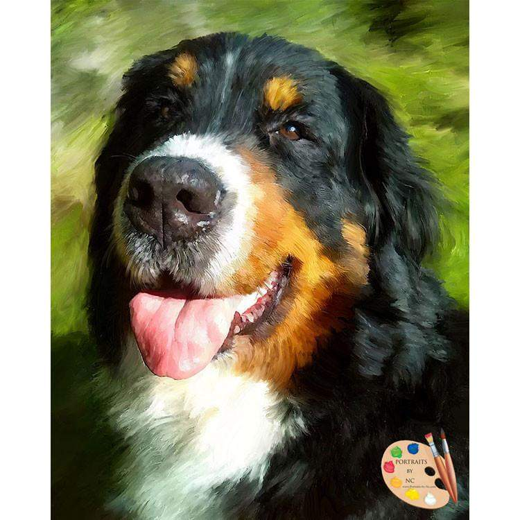Bernese Mountain Dog Pet Portrait 453 - Portraits by NC