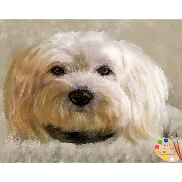 Bichon Frise Dog Painting
